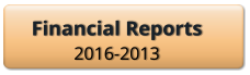 Financial Reports 2016-2013